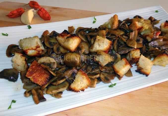 Funghi Champignon con Crostini