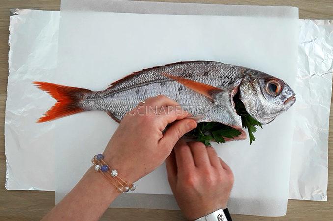 Farcitura Pesce
